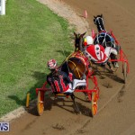 Harness Pony Racing Bermuda, November 13 2017_7741