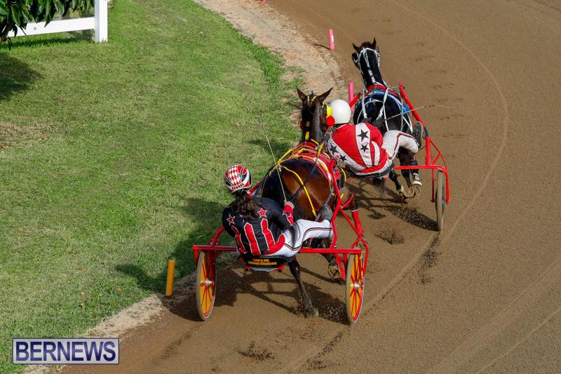 Harness-Pony-Racing-Bermuda-November-13-2017_7741