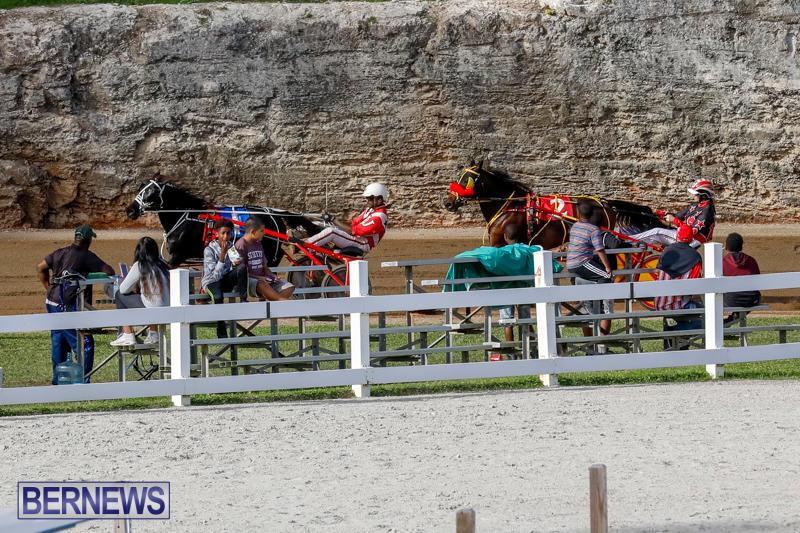 Harness-Pony-Racing-Bermuda-November-13-2017_7753