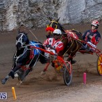 Harness Pony Racing Bermuda, November 13 2017_7757