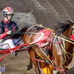 Harness Pony Racing Bermuda, November 13 2017_7770