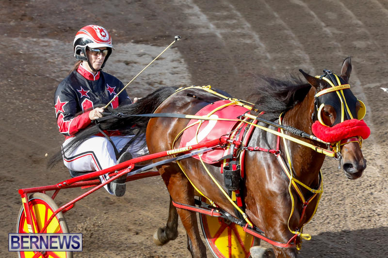 Harness-Pony-Racing-Bermuda-November-13-2017_7770