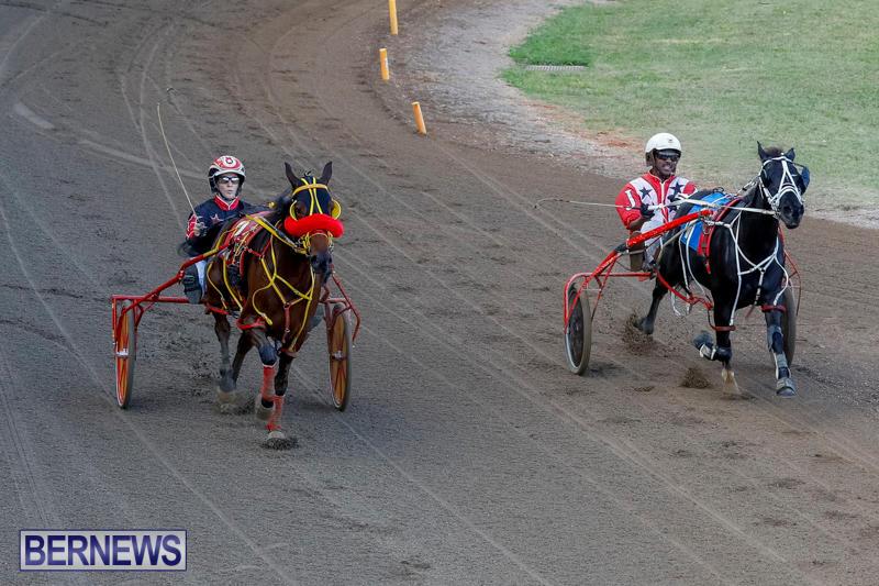 Harness-Pony-Racing-Bermuda-November-13-2017_7798