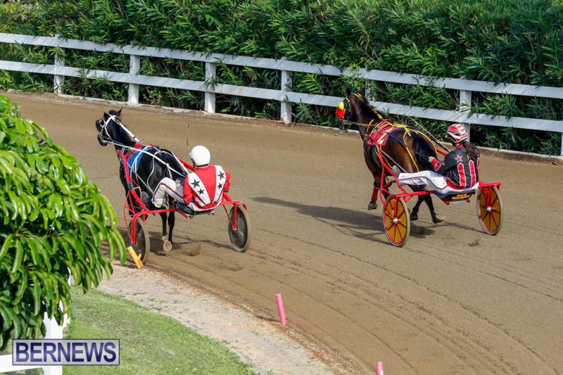 Harness-Pony-Racing-Bermuda-November-13-2017_7807