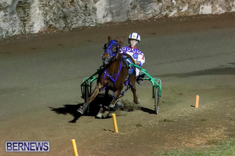 Harness-Pony-Racing-Bermuda-November-4-2017_3169