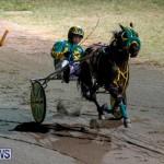 Harness Pony Racing Bermuda, November 4 2017_3178