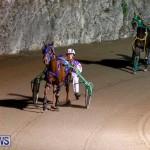 Harness Pony Racing Bermuda, November 4 2017_3185
