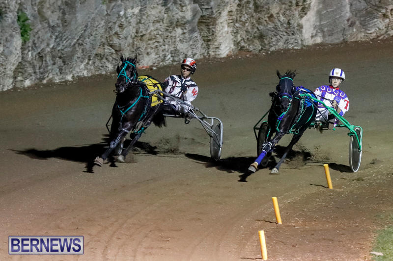 Harness-Pony-Racing-Bermuda-November-4-2017_3239