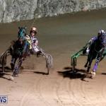 Harness Pony Racing Bermuda, November 4 2017_3242