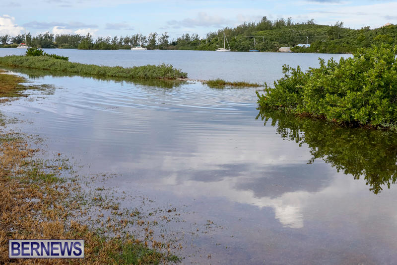 High Tide Flooding Bermuda, November 4 2017_2556