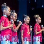 Live Love Life talent show Bermuda Nov 12 2017 (23)