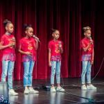 Live Love Life talent show Bermuda Nov 12 2017 (24)