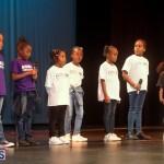 Live Love Life talent show Bermuda Nov 12 2017 (65)