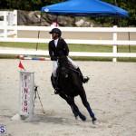 Stardust Stables Jumper Show Bermuda Oct 28 2017 (14)
