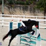 Stardust Stables Jumper Show Bermuda Oct 28 2017 (17)