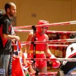 Undefeated Boxing Bermuda, November 11 2017_6595