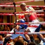 Undefeated Boxing Bermuda, November 11 2017_6608