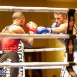 Undefeated Boxing Bermuda, November 11 2017_6613