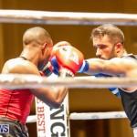 Undefeated Boxing Bermuda, November 11 2017_6618