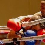 Undefeated Boxing Bermuda, November 11 2017_6650