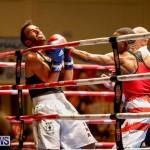 Undefeated Boxing Bermuda, November 11 2017_6656