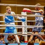 Undefeated Boxing Bermuda, November 11 2017_6671