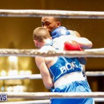 Undefeated Boxing Bermuda, November 11 2017_6769