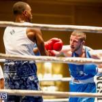 Undefeated Boxing Bermuda, November 11 2017_6814