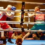 Undefeated Boxing Bermuda, November 11 2017_6825
