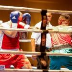 Undefeated Boxing Bermuda, November 11 2017_6828