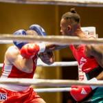Undefeated Boxing Bermuda, November 11 2017_6848
