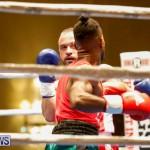 Undefeated Boxing Bermuda, November 11 2017_6855