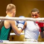 Undefeated Boxing Bermuda, November 11 2017_6942