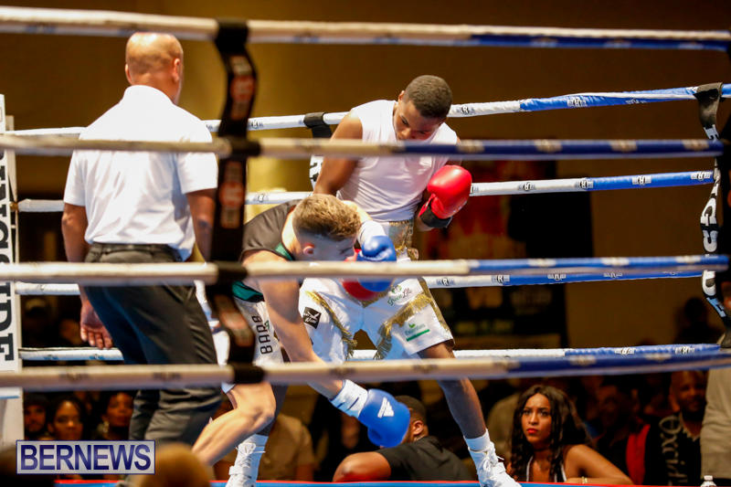 Undefeated-Boxing-Bermuda-November-11-2017_6944