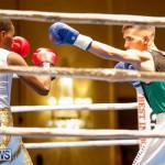 Undefeated Boxing Bermuda, November 11 2017_6947