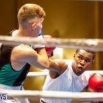 Undefeated Boxing Bermuda, November 11 2017_6966