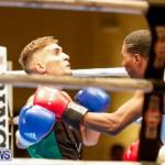 Undefeated Boxing Bermuda, November 11 2017_6969