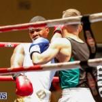 Undefeated Boxing Bermuda, November 11 2017_6976