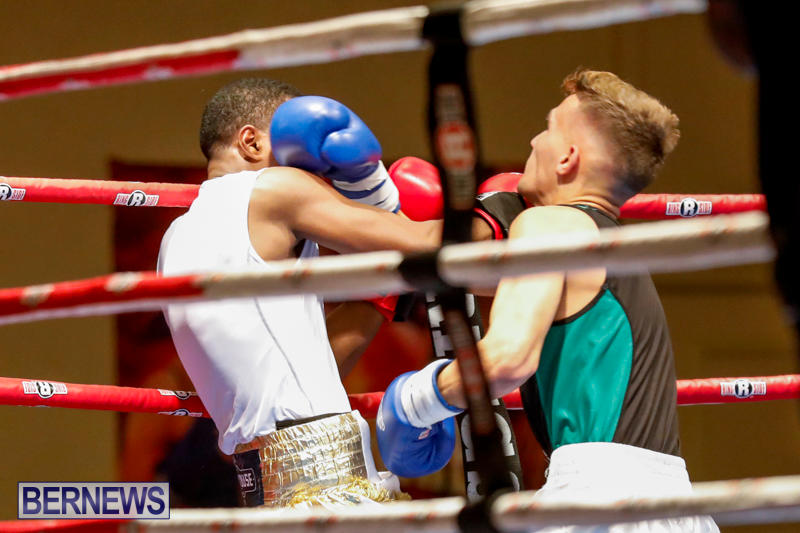 Undefeated-Boxing-Bermuda-November-11-2017_6979