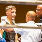 Undefeated Boxing Bermuda, November 11 2017_7017