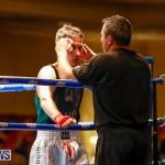 Undefeated Boxing Bermuda, November 11 2017_7028