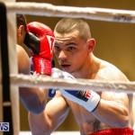 Undefeated Boxing Bermuda, November 11 2017_7151