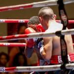 Undefeated Boxing Bermuda, November 11 2017_7208