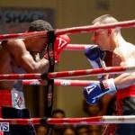 Undefeated Boxing Bermuda, November 11 2017_7235