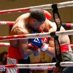 Undefeated Boxing Bermuda, November 11 2017_7242