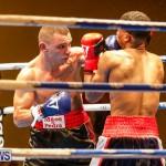 Undefeated Boxing Bermuda, November 11 2017_7337