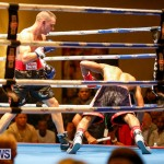 Undefeated Boxing Bermuda, November 11 2017_7343