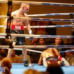 Undefeated Boxing Bermuda, November 11 2017_7344