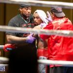 Undefeated Boxing Bermuda, November 11 2017_7363
