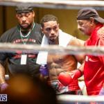 Undefeated Boxing Bermuda, November 11 2017_7375